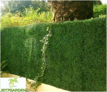 Plaque de Buis artificielle clipsable Jet7garden